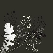 Free Template For Decorative Card Royalty Free Stock Photo - 14428795