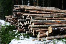 Free Logs Stock Photos - 14428953