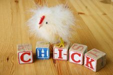 Wooden Blocks With Chick Royalty Free Stock Photos