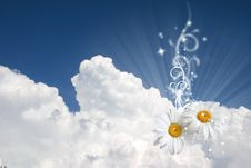 Free Floral Sky Background Stock Photos - 14429323
