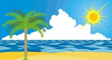 Free Beach, Palm Trees And Sun Royalty Free Stock Photography - 14429947