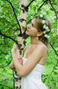 Free Young Woman Embraces   Birch Royalty Free Stock Image - 14431516