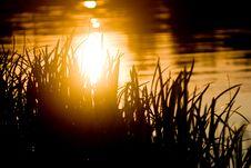Free Sunset Stock Photos - 14433243