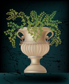 Vector Illustration Of Antique Amphora Stock Image