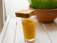 Free Glass Of Orange Juice Royalty Free Stock Image - 14433786