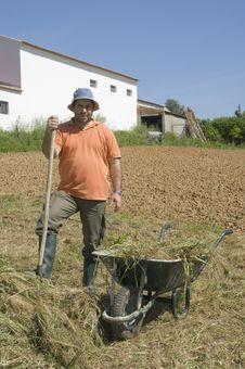 Farmer Working On The Farm Stock Photo
