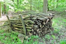 Free Firewood Stack 2 Royalty Free Stock Photos - 14434088