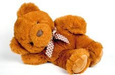 Free Teddy Stock Photography - 14434612