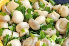 Free Close Up Of Marinade Mushrooms Stock Photos - 14434833