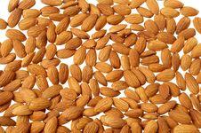 Free Almonds Stock Photos - 14435163