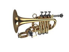Free Wind Instrument Stock Photography - 14435362