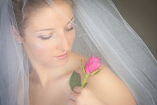 Woman In Wedding Dress And Rose Stock Photos