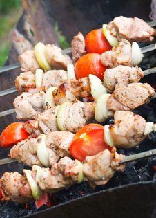 Free Kebab Royalty Free Stock Images - 14436509