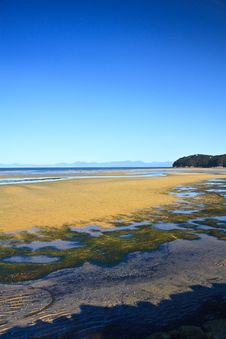 Free Low Tide Stock Photography - 14437082
