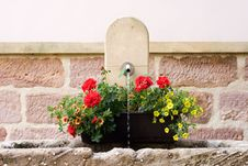 Free Spring Flowers On Water Fountain Royalty Free Stock Photos - 14437638