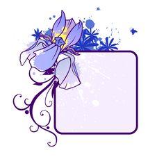 Free Iris Blank Stock Photo - 14438920