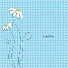 Free Greeting Card Stock Photo - 14438930