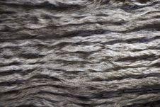 Closeup Of Beautiful Fur Stock Image