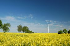Wind Turbine On Field Of Oilseed Rape Royalty Free Stock Images