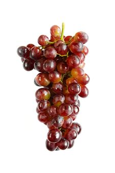 Free Juicy And Fresh Bunch Of Purple Grapes Royalty Free Stock Images - 14439149