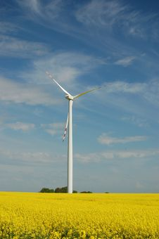 Wind Turbine On Field Of Oilseed Rape Stock Image