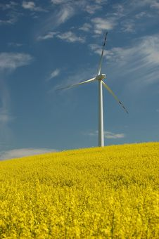 Wind Turbine On Field Of Oilseed Rape Stock Images
