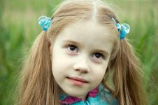 Free A Little Girl On A Green Meadow Stock Photography - 14439992
