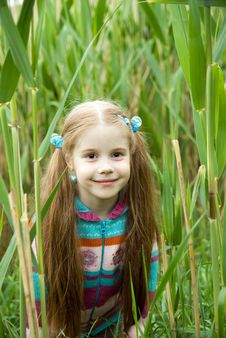 Free A Little Girl On A Green Meadow Stock Images - 14439994