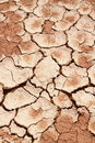 Free Dry Cracked Earth Texture Royalty Free Stock Photography - 14442657