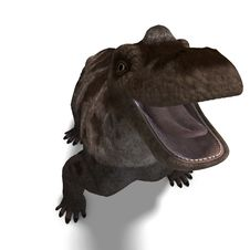 Free Dinosaur Keratocephalus. 3D Rendering With Stock Photos - 14442003