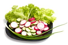 Free Fresh Cucumber, Radish And Lettuce Stock Photo - 14442410