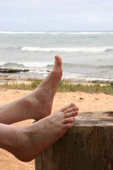 Free Sandy Feet Royalty Free Stock Image - 14442666