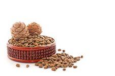 Cedar Nutlets