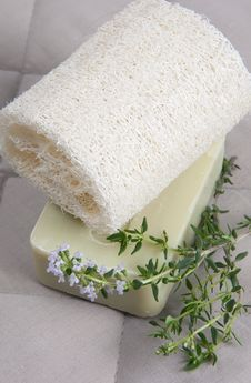 Free Natural Lufah Sponge With Thyme Soap Stock Photos - 14448603