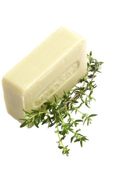 Free Natural Soap And Fresh Thyme, Isolated Royalty Free Stock Image - 14448636