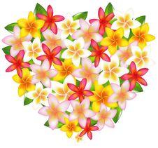 Free Heart From Fragipani. Vector Royalty Free Stock Photography - 14449417