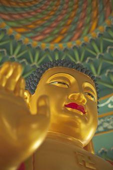 Free Great Buddha Royalty Free Stock Photo - 14449725