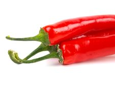 Free Red Chili Pepper Stock Photos - 14449733