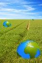 Free World Globe Royalty Free Stock Images - 14454859