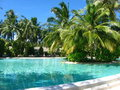 Free Swimming Pool Stock Photo - 14459390