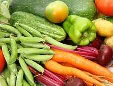 Free Fresh Vegetables Stock Photos - 14450573