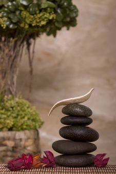 Free Balance Stock Photo - 14452370