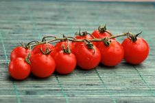 Free Fresh Tomatoes Stock Photos - 14452873