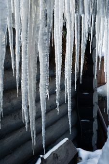 Free Long Icicles Stock Images - 14453624