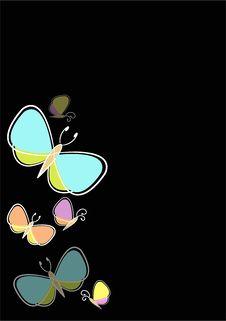 Free Butterflies On Black Stock Image - 14453971