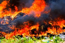 Free Big Flames On Field During Fire Royalty Free Stock Image - 14454146