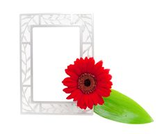 Free Frame With Leaf And Flower Stock Images - 14455124