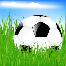 Free Classic Soccer Ball In Grass. Vector Royalty Free Stock Photo - 14455165