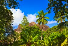 Free Tropical Landscape Stock Image - 14457341