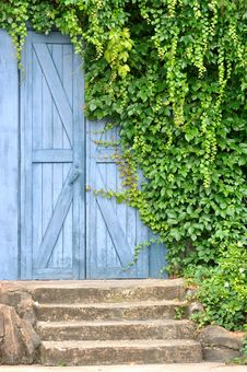 Free Garden Door Covered By Liane Plant Stock Photography - 14457672
